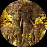 Fotokunst-olifanten-100-x-100-cm-rond